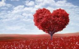 Blogparade: Eine Liebeserklärung an dich selbst #Selbstliebe